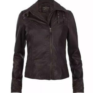 All Saints Belvedere Dark Brown Leather Jacket 8